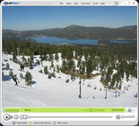 video of big bear
